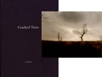 Cracked_Trees_Foto