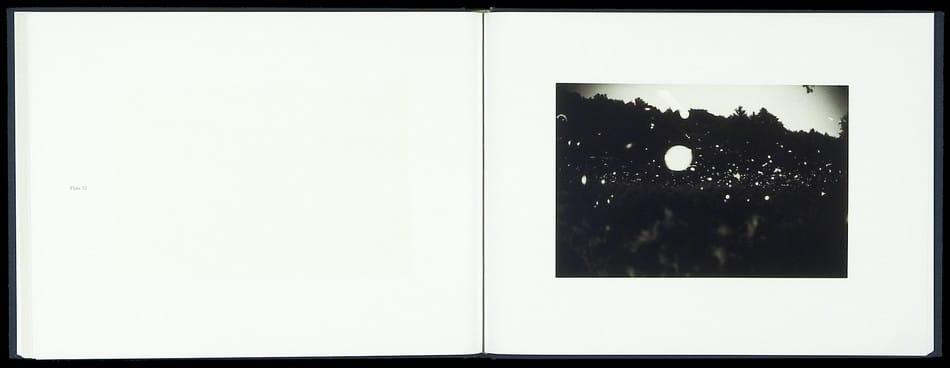 Fireflies_05.jpg