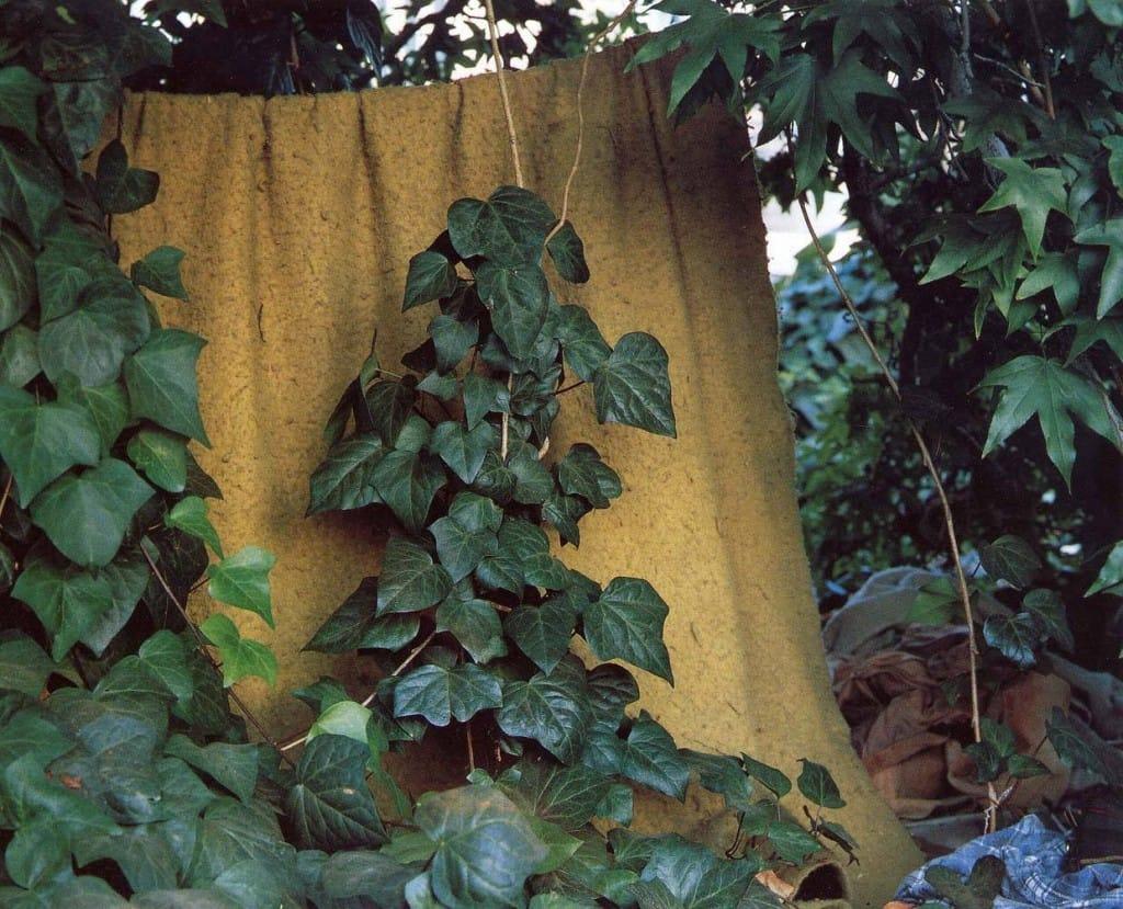 Landscape_For_The_Homeless_05.jpg
