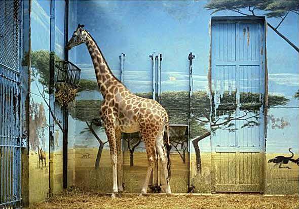 Zoologische_Garten_03