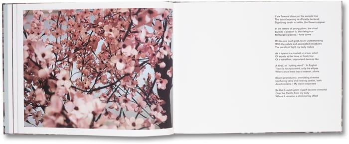 Blossom_06