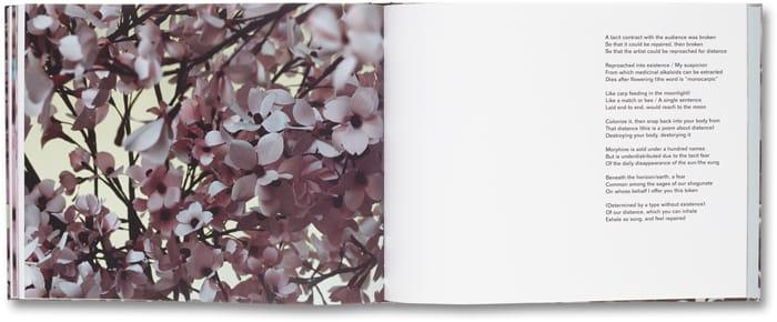 Blossom_11