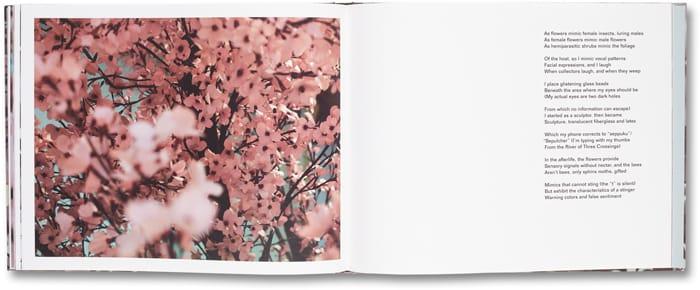 Blossom_12
